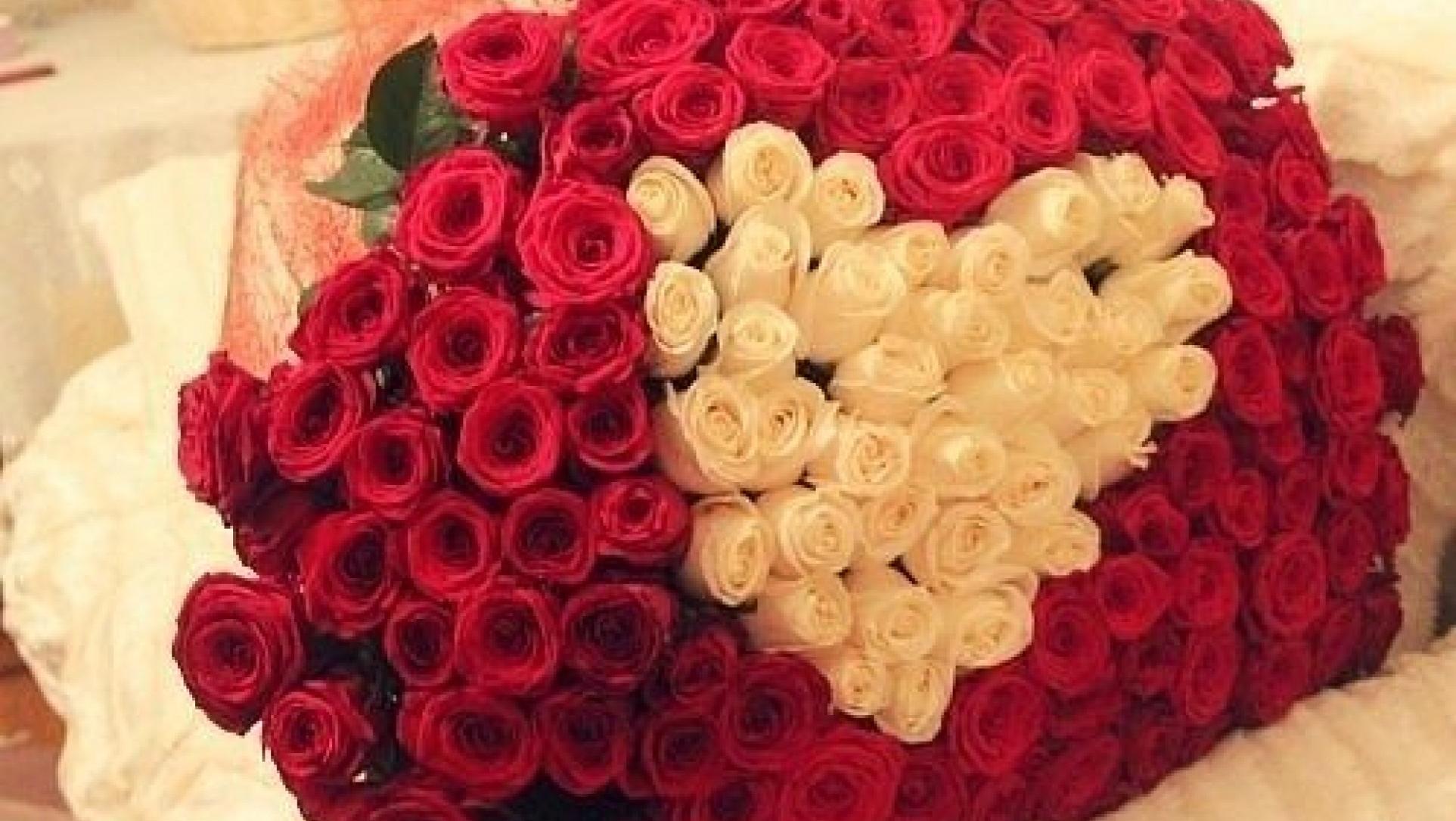 Поздравление 101 роза 22